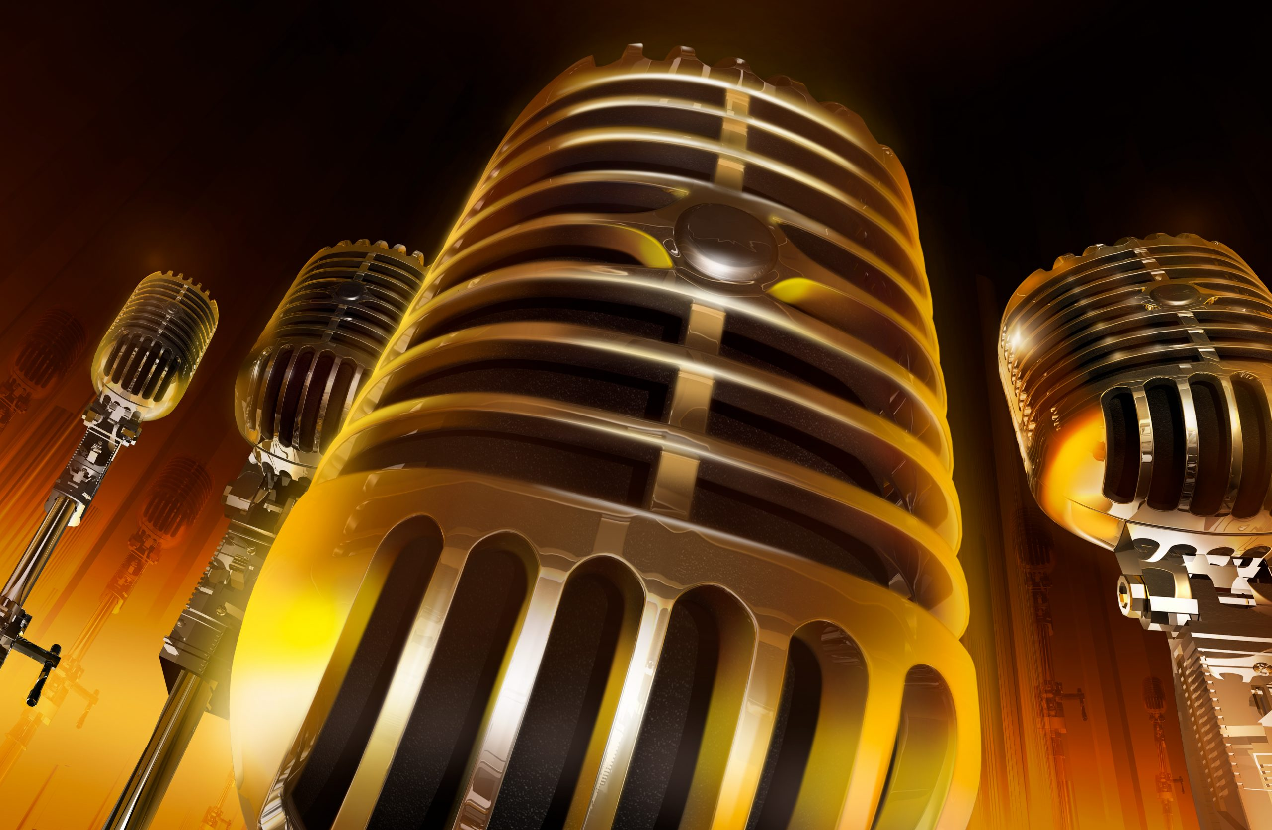 Voice Over Professional